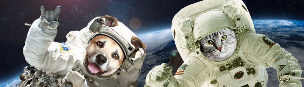Welcome To Your Pet Space!