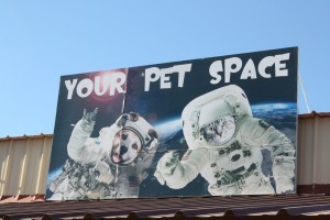 The famous Your Pet Space sign we have put up outside of the facility.