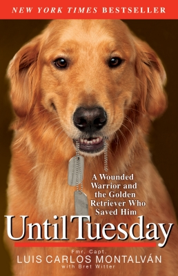 Until Tuesday Cover