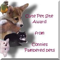 pet site award
