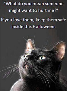 1351483135_5286_halloween safety