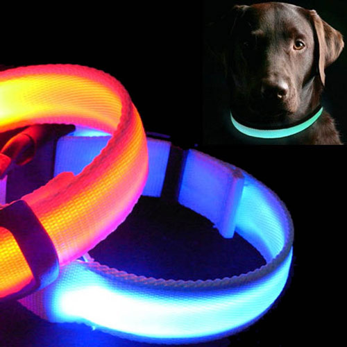Pet Products: SafetyGloDogCollar