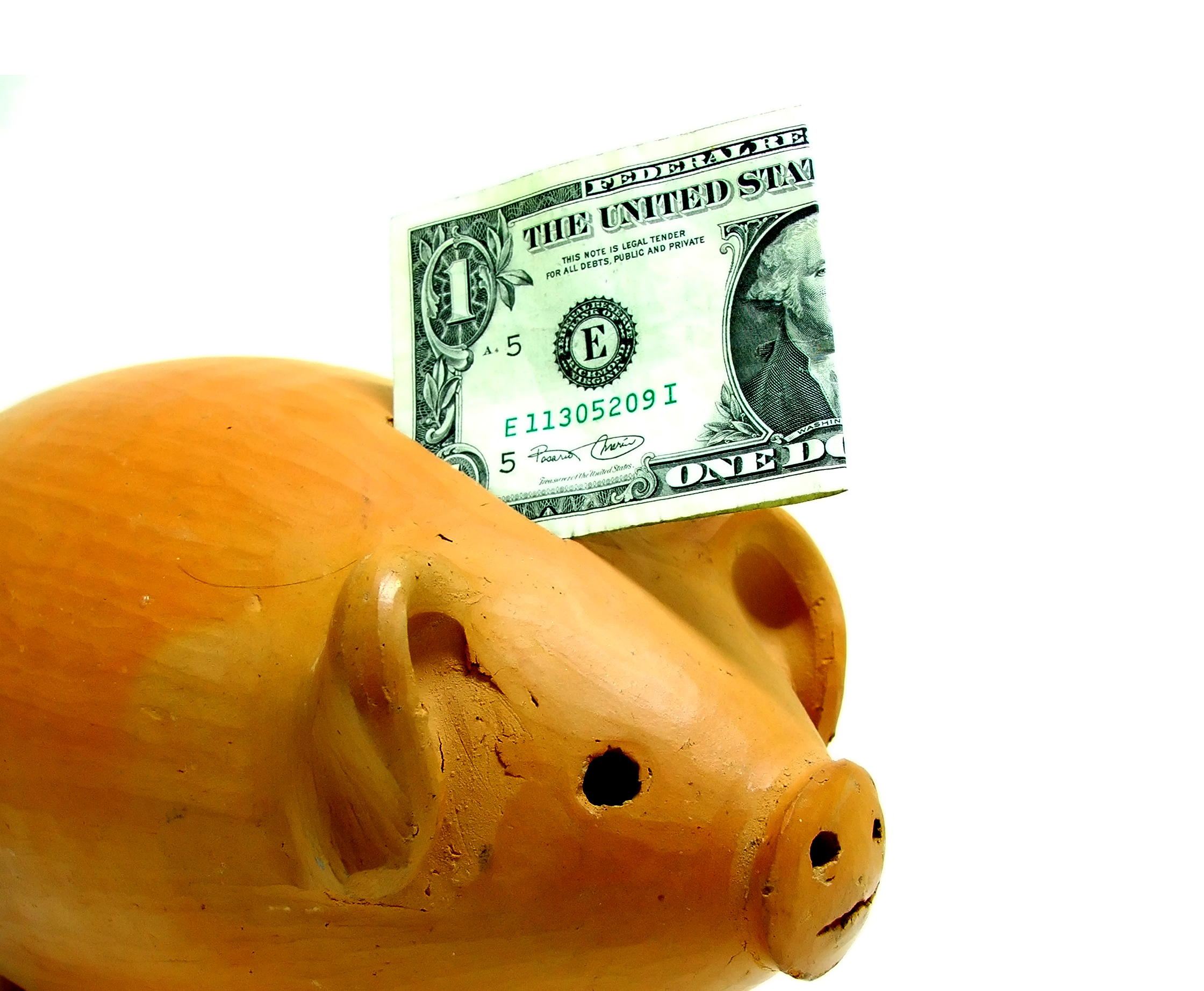 pet health insurance piggy bank