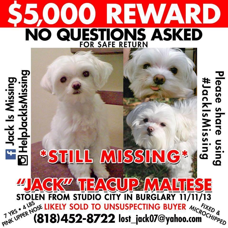 reward for jack