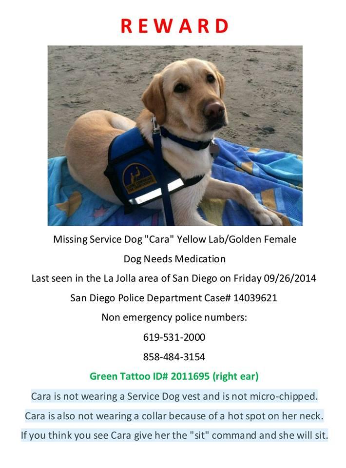 missing service dog