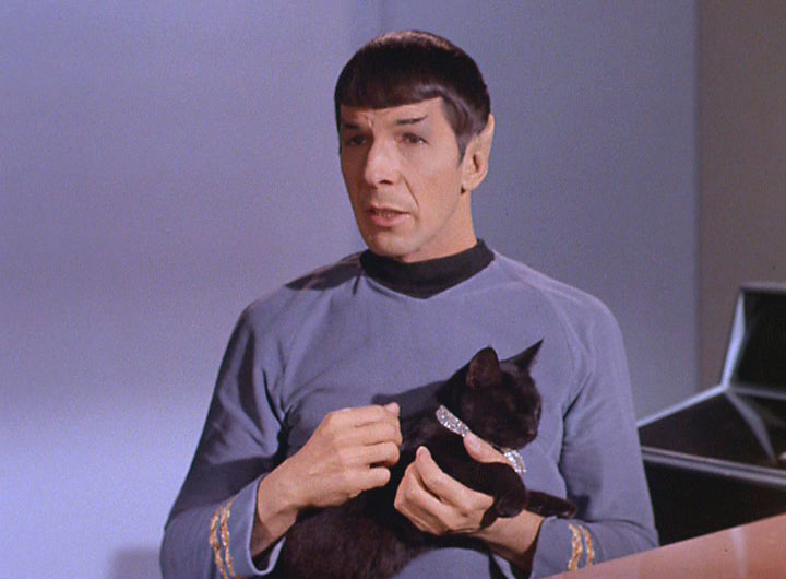 nimoy in catspaw