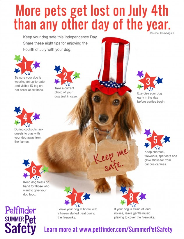 july 4th lost pets