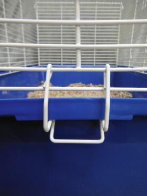 rat cage clip