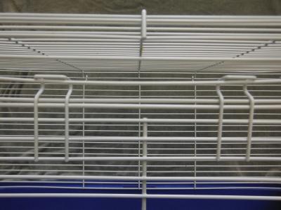 closed rat cage