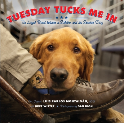 Book cover Tuesday Tucks Me In