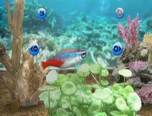 fantasy-aquarium-world