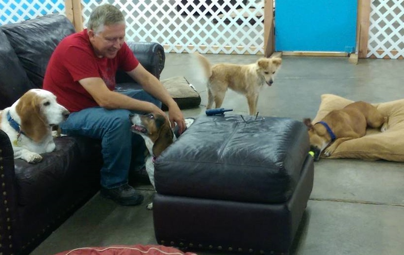 Dave and pack, Dog Daycare/Boarding Facility